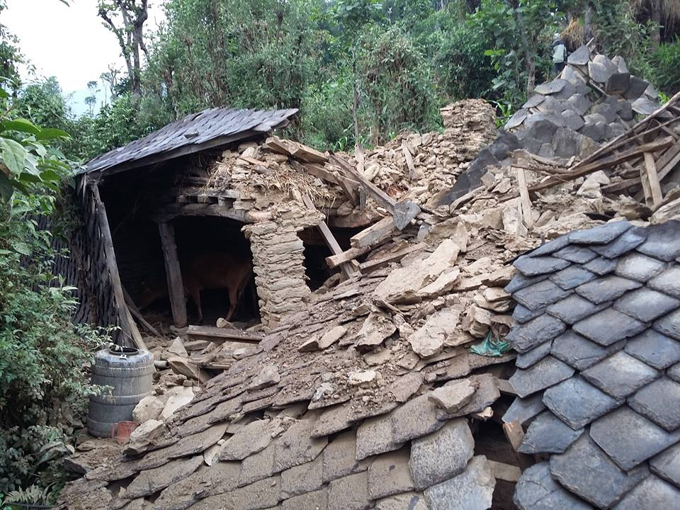 The earthquake devastated livestock shelters as well as homes.